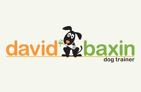 David Baxin